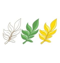 Branches of laurel vector