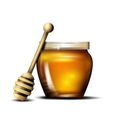 Honey isolated vector
