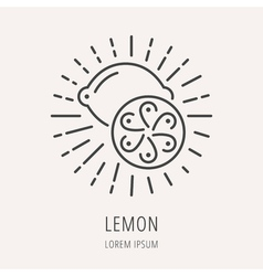 Simple logo template lemon vector