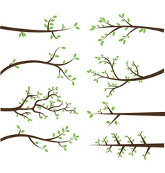 Branch Silhouettes Elements vector image