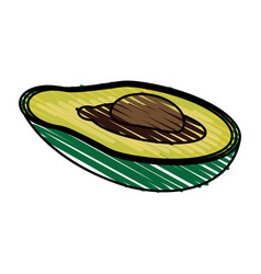 color crayon stripe slice avocado fruit food vector image