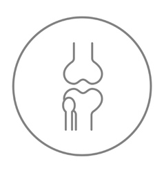 Knee joint line icon vector image