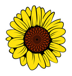 sunflower icon icon cartoon vector image