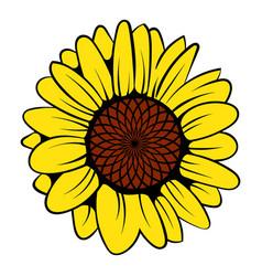 sunflower icon icon cartoon vector image vector image