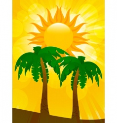 palm trees and summer sun vector image