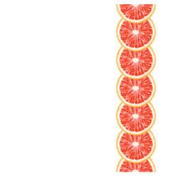 Seamless decorative vertical border of grapefruit vector