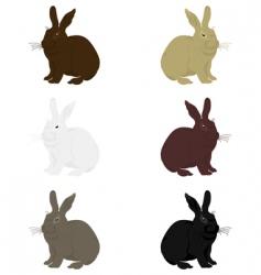 rabbit3 vector image