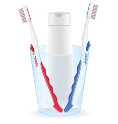 toothbrush and toothpaste 02 vector image