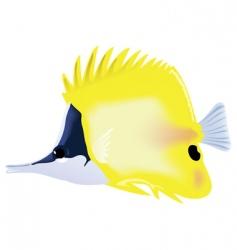 Tropical fish forcipiger flavissimus vector