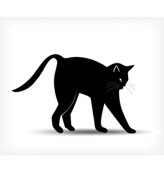 Silhouette of a black cat vector