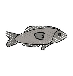 Color crayon stripe fish aquatic animal vector
