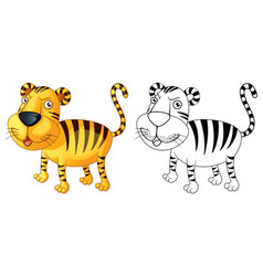 doodle animal for tiger vector image vector image