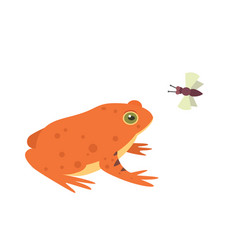 red frog cartoon isolated vector image