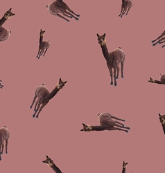 Patternseamless with the image of a llama vector