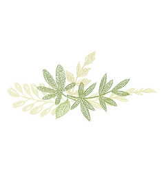 green botanical hand drawn leaf composition vector image
