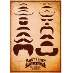 Set of different male mustache on a grungy backgro vector