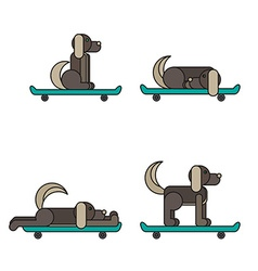 Dog sitting on a skateboard vector