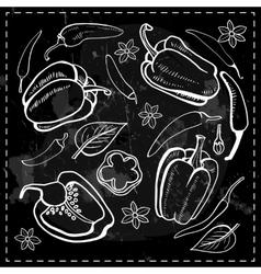 Chilli chili pepper vegetables vector