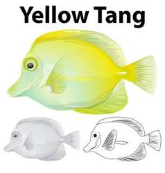Doodle character for yellow tang fish vector