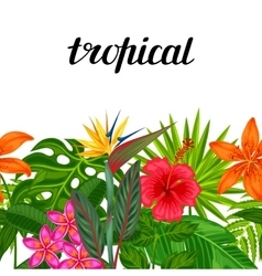 Seamless horizontal border with tropical plants vector