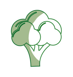 Silhouette broccoli organic healthy vegetable vector