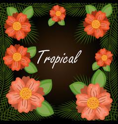 tropical flowers garden background vector image