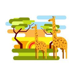 African savannah safari and giraffe summer vector