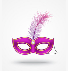 Carnival masks with feathers vector