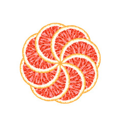 Circle of grapefruit slices vector
