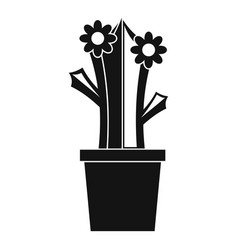 Flowering cactus icon simple style vector