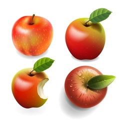 Set of red ripe Apples four various view vector image