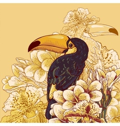 Tropical background with exotic flowers Toucan vector image vector image