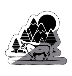 Isolated bull animal design vector