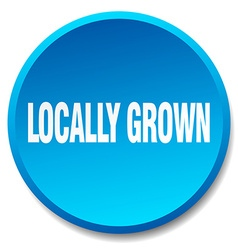 Locally grown blue round flat isolated push button vector