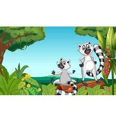 Wild lemurs in the woods vector image