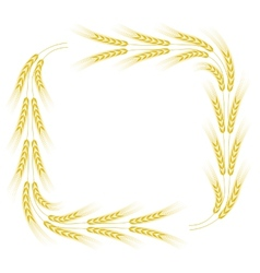Wheat frame vector