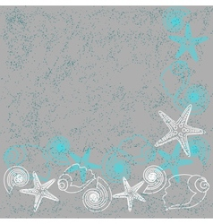 Grunge card with shells and stars vector image