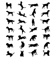 dogs 2 vector image