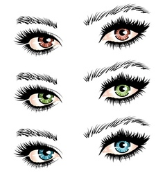Female eyes2 vector image vector image