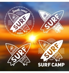 White crossing surfing boards logo vector image