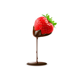 Strawberry with chocolate trickle isolated on vector