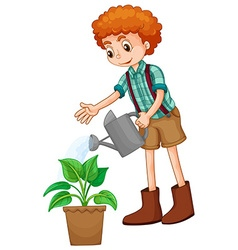 Boy watering the plant vector image