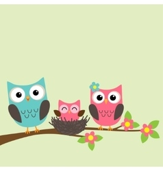 Cartoon family of owls vector image