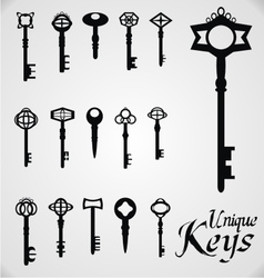 Unique Keys vector image vector image