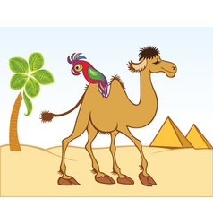 camel parrot vector image