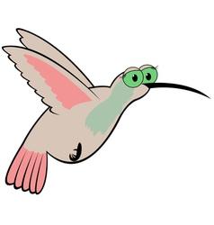 Hummingbird cartoon vector