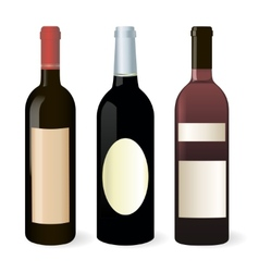 Bottles of wine set vector image