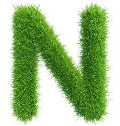capital letter n from grass on white vector image