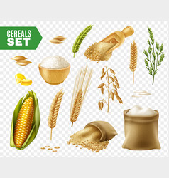 cereals transparent icon set vector image