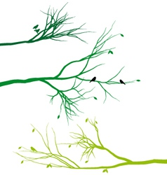 Tree branches with birds and leaves vector